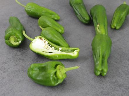 padron-pepper.jpg